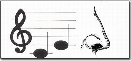 В ребусах очень часто используются названия нот - до, ре, ми, фа, соль, ля, си.