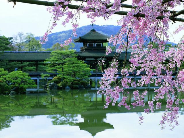 удивительная Япония фото
