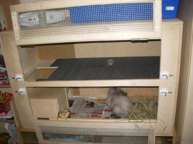 Клетка для декоративных кролика своими руками схема